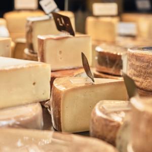 Vue du choix de fromage présent dans le magasin de la laiterie/fromagerie du Mouret